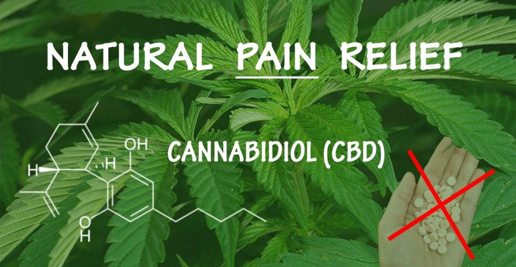 CBD Natural Pain Relief