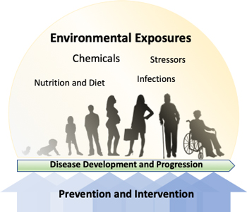 environment exposure and disease prevention