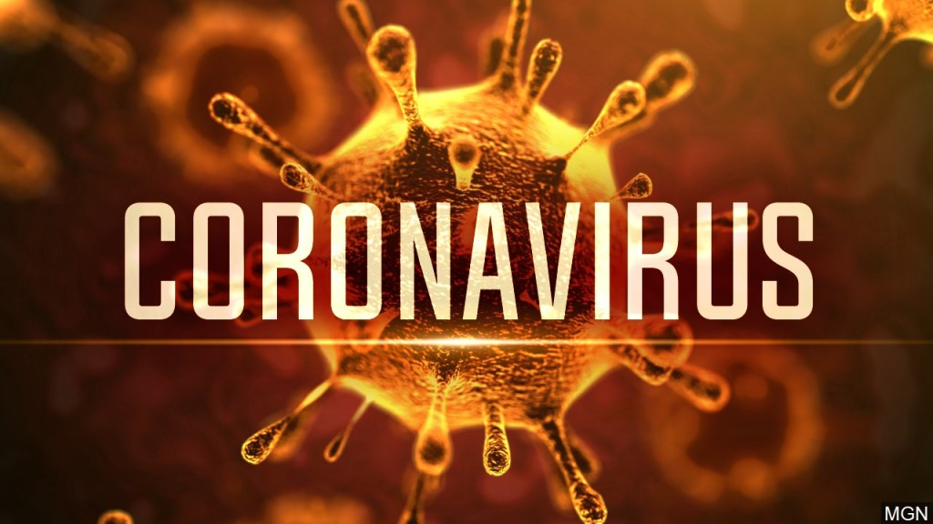 picture of the coronavirus. and word says coronavirus